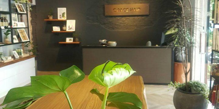 新竹髮廊設計案